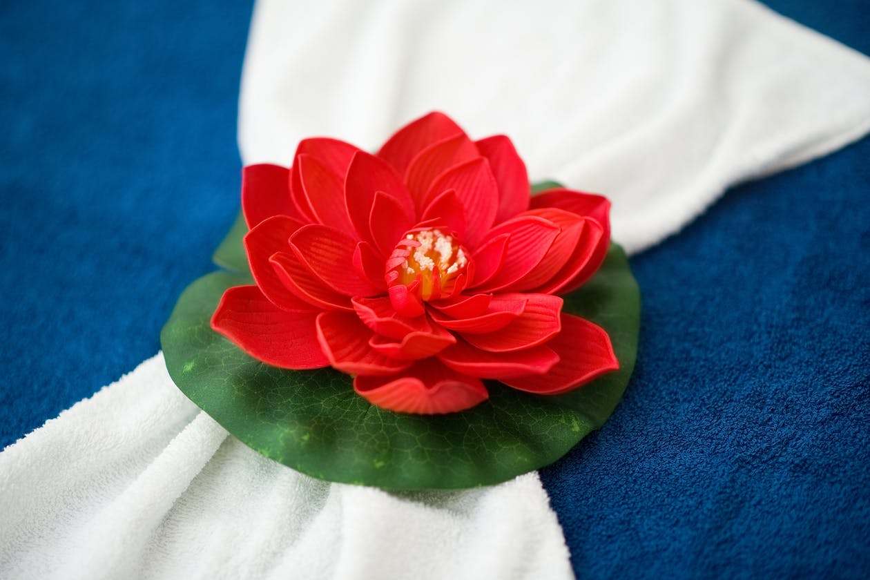 Red Lotus Massage - Cheltenham image 11