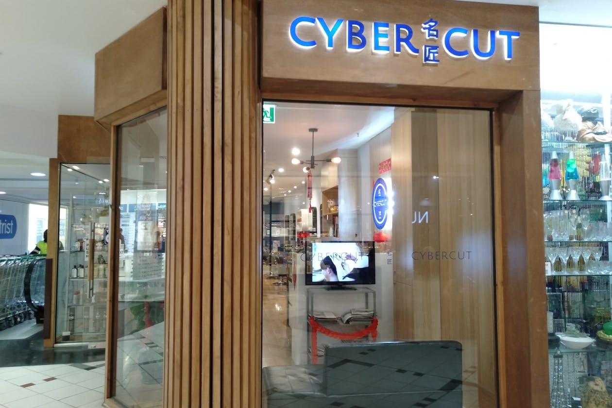 Cybercut