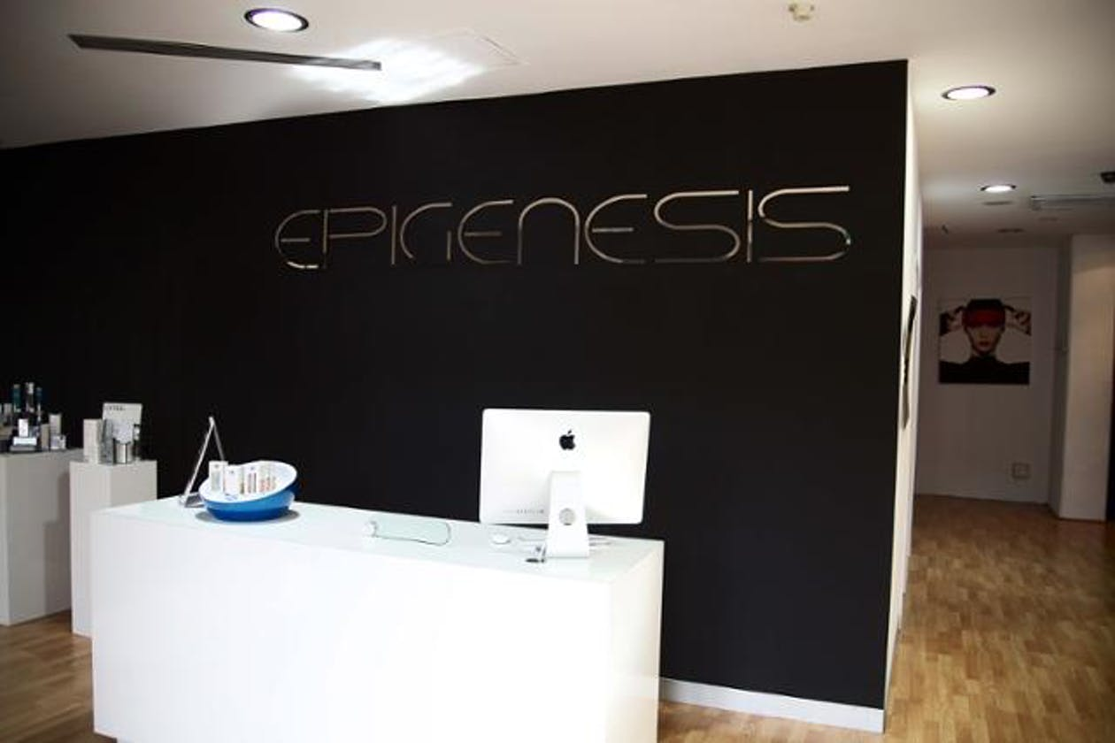 Epigenesis image 2