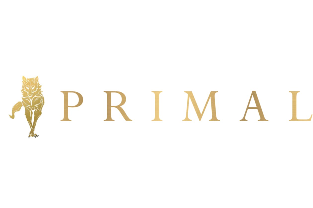 Primal Physiotherapy