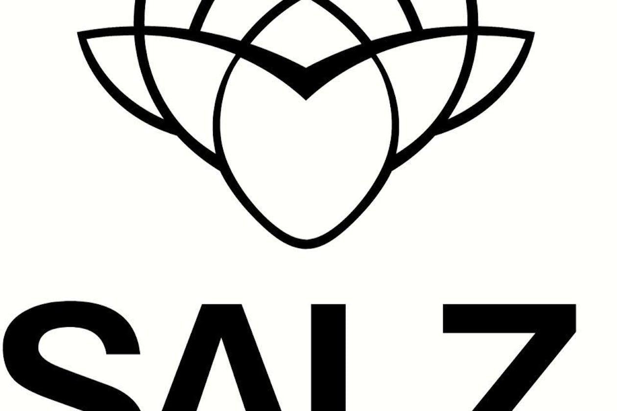 Salz Hair and Beauty
