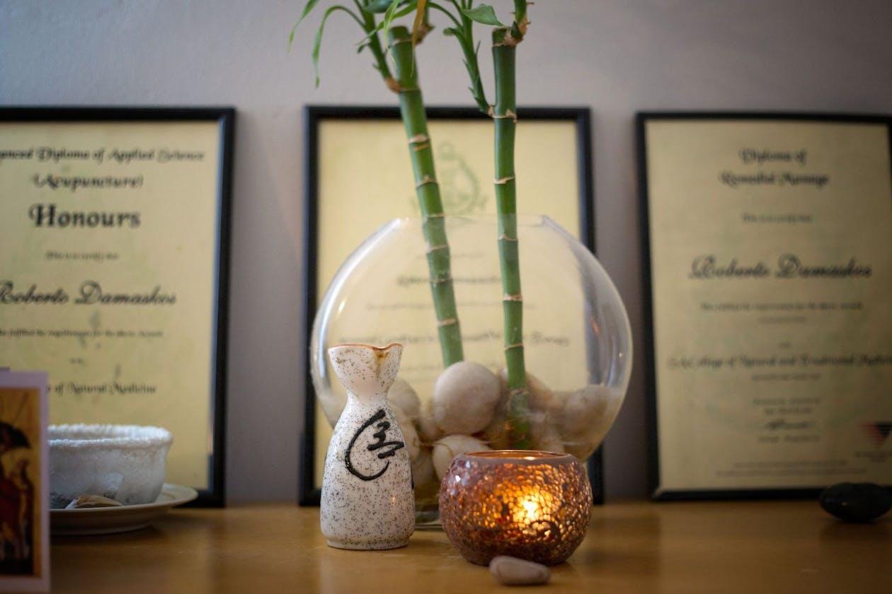 Anasa Healing image 9